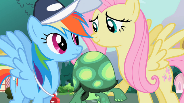 "File:Fluttershy ""It won't hurt to let him try"" S2E7.png"