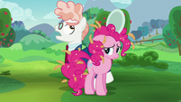 Svengallop circles around Pinkie Pie S5E24