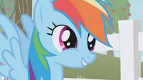 "Rainbow Dash ""don't you see, Twilight?"" S1E03"