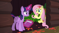 "Fluttershy ""I guess we should find out why"" S5E23"