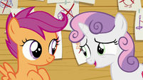 "Sweetie Belle ""And I know you two aren't interested"" S6E4"