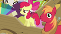 "Apple Bloom ""isn't that it on your head"" S4E09.png"