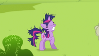 Twilight Sparkle groan 3 S2E03