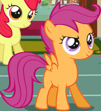 Sweetie Belle Apple Bloom Scootaloo smile 2 crop S1E12.png