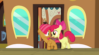 Apple Bloom meets Babs Seed S3E04