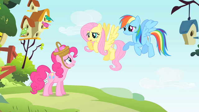 File:Rainbow Dash and Fluttershy have to housesit S1E25.png