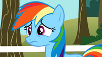 Rainbow Dash upset S2E15