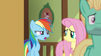 "Rainbow Dash ""you think he can do it?"" S6E11"