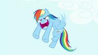"""Rainbow """"He's a rock!"""" S4E18"""