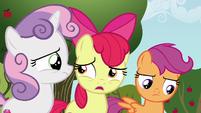 "Apple Bloom ""can a griffon even get a cutie mark?"" S6E19"