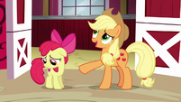"Applejack ""why would anypony want to win"" S6E14"