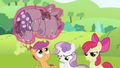 "Apple Bloom ""Yeah. Great."" S2E03.png"