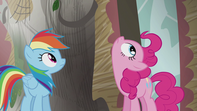 File:Rainbow and Pinkie looks up S5E8.png