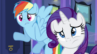 "Rainbow and Rarity ""what are hands?"" EG"