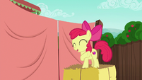 Apple Bloom excited to work with Applejack S6E14