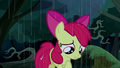 "Apple Bloom ""how could this get any worse?"" S5E6.png"