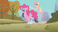 The ponies are coming to see the Iron Pony Competition S1E13