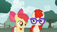 Apple Bloom clueless moment S1E12