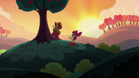 "Apple Bloom ""pretty crazy idea in the first place"" S5E17"
