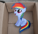 My Little Dashie