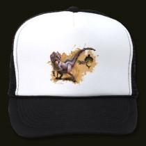 File:Great jaggi hat-p148639276827414804738ml 210.jpg