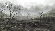 Oldswamp