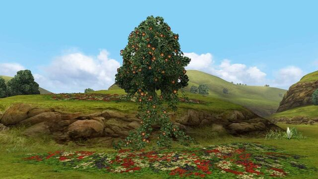 File:MHFGG-Flower Field Screenshot 005.jpg