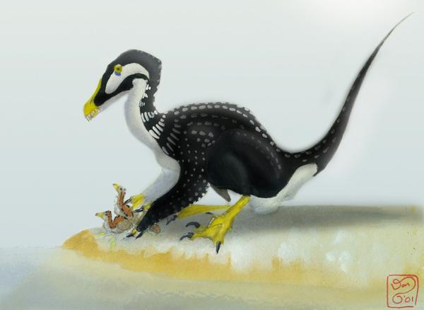 File:Mergaraptor.jpg