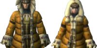 Ludroth Armor (Blade)