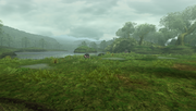 MHFU-Great Forest Screenshot 005