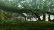 GrtForest-Area5