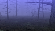 MHFU-Old Swamp Screenshot 005