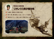 MH4-Silver Rathalos Strategy