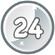 Level 24 icon