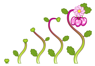 Love Berries growth