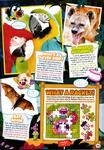 Magazine issue 47 p39