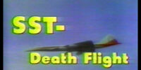 SST-Death Flight