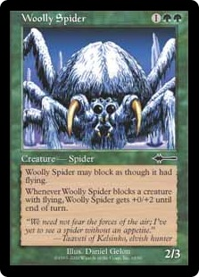 Woolly spider BD