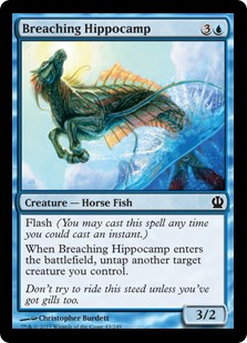 Breaching Hippocamp THS