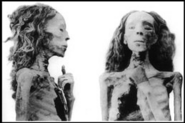 The Elder Lady Mummy