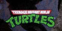 Teenage Mutant Ninja Turtles (film)