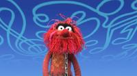 Muppets-com63