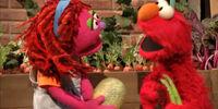 Garden Song (Sesame Street)