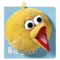 Big Bird!
