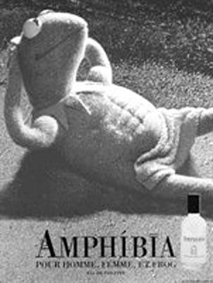 File:Amphibia.jpg