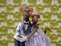 Rats01