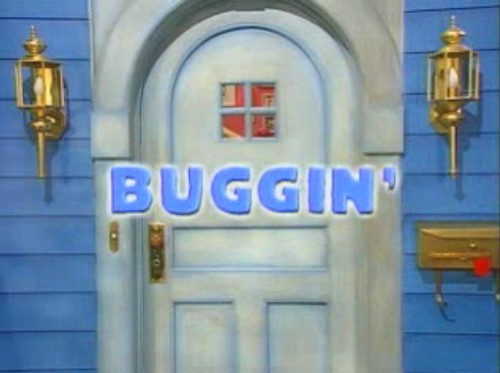 File:01 Buggin' Title Display.jpg