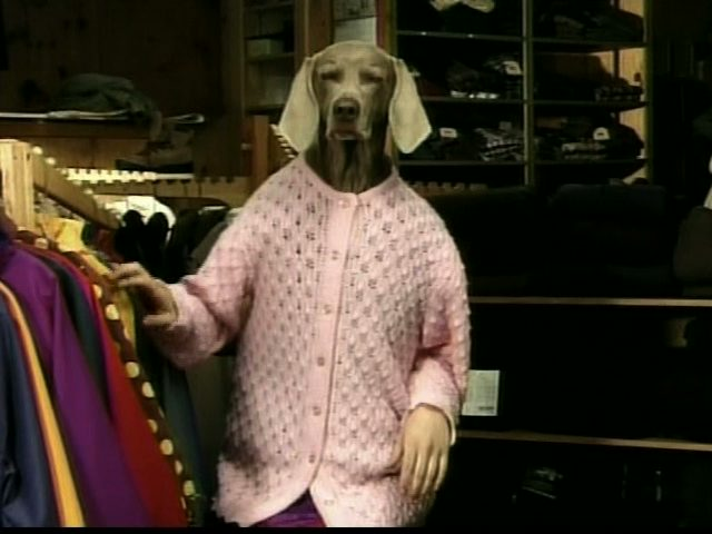 File:Dogswearclothes?.jpg