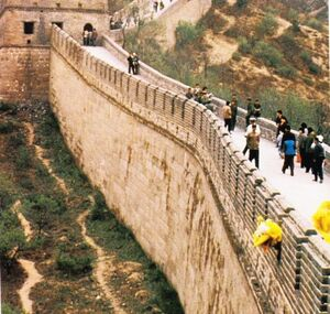 Big bird great wall