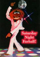 SaturdayNightFurball